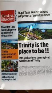 Avis - Trinity - Taps
