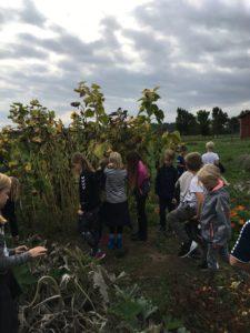 Vilcon Hotel Konferencegård Hvilebjergskolen RelationsNetværket Virksomheder adopterer skoleklasser